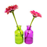 Flower in a bottle Stock Photos