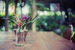 Flower in bottle jar and little tree in flowerpot and they are on the the wood table in coffee shop. A flower in bottle jar and little tree in flowerpot and royalty free stock image
