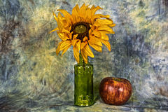 Flower bottle. A  sun flower in a bottle with an apple with a textured back ground Stock Photos