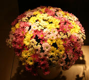 Flower bouquet. A Flower bouquet of Chrysanthemums Royalty Free Stock Photography