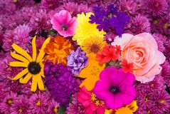 Flower Bouquet. A Colorful arrangement of Flowers in a Bouquet Royalty Free Stock Photography