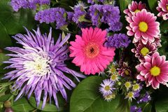 Flower bouquet. A bouquet of pink and purple fresh flowers Stock Image