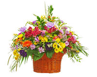 Flower bouquet arrangement centerpiece in wicker basket isolated Royalty Free Stock Photo
