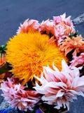 Flower bouquet. Autumn flower bouquet with sunflower royalty free stock photo