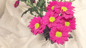 Flower bouquet. Beautiful flowers bunch pink magenta green Royalty Free Stock Photo