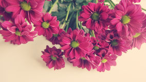 Flower bouquet. Beautiful flowers bunch pink magenta green Stock Image