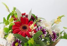 Flower bouquet. Bouquet of colourful flowers isolated on white. Royalty Free Stock Photography