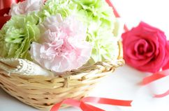Flower bouquet of carnation and rose Royalty Free Stock Image