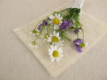Flower bouquet with chamomile and lavender Royalty Free Stock Photography