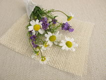 Flower bouquet with chamomile and lavender Stock Photography