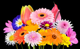Flower Bouquet Collection of Various Colorful Flowers Isolated Stock Images