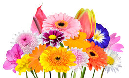 Flower Bouquet Collection of Various Colorful Flowers Isolated Stock Photo