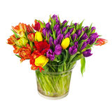 Flower bouquet from colorful tulips in glass vase isolated. Royalty Free Stock Photography
