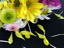 Flower Bouquet with Fallen Petals Royalty Free Stock Images