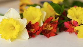 Flower decor yellow narcissus red alstroemeria. Flower bouquet. Floral decor. Sliding shot of yellow narcissus and red alstroemeria. Nature and floristry stock footage