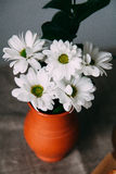 Flower. A bouquet of flowers in a pot. Yekaterinburg royalty free stock photography