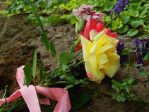 Flower bouquet in garden. Rose, daisy and carnation bouquet on ground in sunny garden Stock Image