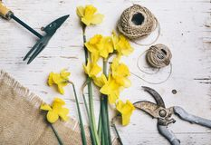 Flower bouquet and gardening tool Stock Images
