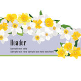 Flower bouquet header set. Floral decor collection Royalty Free Stock Image