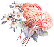 FLower bouquet. Hydrangea and rose bush in blossom. Stock Photography