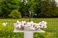 Flower bouquet and microphone on stage Royalty Free Stock Photo