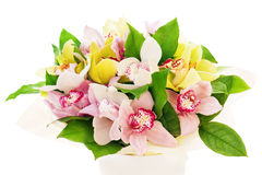 Flower bouquet from orchids arrangement centerpiece Royalty Free Stock Photo