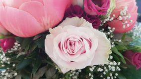 Flower bouquet in pink royalty free stock images