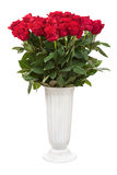 Flower Bouquet from Red Roses in White Vase Isolated. Flower Bouquet from Red Roses in White Vase Isolated on White Background. Closeup Stock Photos