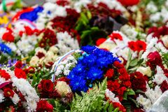 Flower bouquet with ribbon of Russia flag. National Day of the Russian Federation - image.  stock photo