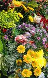 Flower bouquet on spring park Royalty Free Stock Image