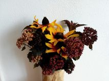 Flower bouquet on sunday afternoon.  royalty free stock images