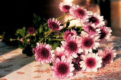 Flower Bouquet on the table. Under warm sunlight stock images