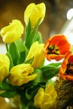 Flower bouquet. Tulips Royalty Free Stock Images