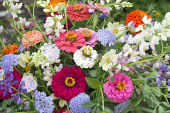 Flower bouquet. In vase in a garden setting Royalty Free Stock Photos
