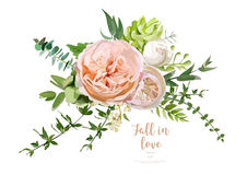 Flower Bouquet vector design object element. Peach, pink rose, e. Ucalyptus, succulents berry herbal mix. Greeting lovely floral card elegant template with text Vector Illustration