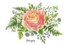 Flower Bouquet vector watercolor element. Peach, pink rose Ranun. Culus, wax flowers eucalyptus, green fern leaf, berry mix. Greeting, lovely floral elegant Royalty Free Stock Photography