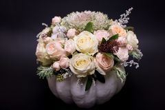 Flower bouquet in a white pumpkin on a black background, a mixture of flowers, peony rose, eucalyptus, chrysanthemum royalty free stock photography