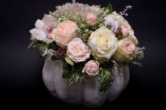Flower bouquet in a white pumpkin on a black background, a mixture of flowers, peony rose, eucalyptus, chrysanthemum royalty free stock photos