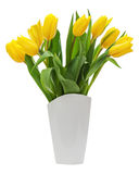Flower bouquet from yellow tulips in vase isolated on white back Royalty Free Stock Images