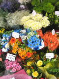 Flower bouquets. Flower bouquet bunches in a shop Stock Image