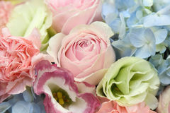 Flower bouquets Stock Image