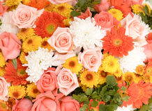 Flower bouquets , bunch of flowers Royalty Free Stock Photos