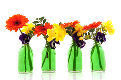 Flower bouquets in green bottles Stock Photos