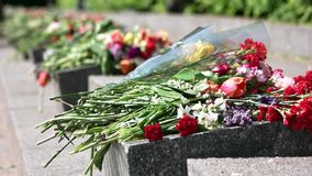 Flower bouquets on memorial granit stones. Close up. Memorial day stock footage