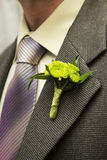 Flower boutonniere on the lapel Royalty Free Stock Photo