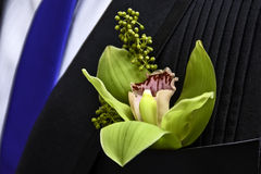 Flower Boutonniere Royalty Free Stock Photos
