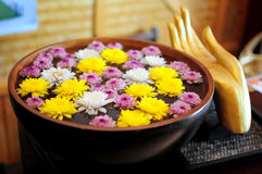 Flower bowl. Flower heads floating in a bowl of water Stock Image