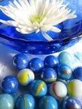 Flower bowl Royalty Free Stock Photos