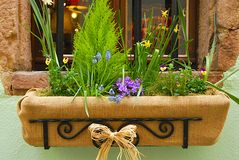 Flower box. On the house window royalty free stock images