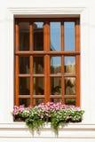 Flower box below a window. On an apartment building Stock Photos